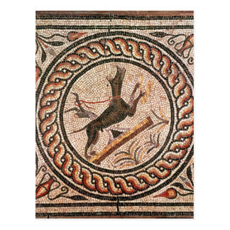 Cave Canem  2nd-3rd century Postcard