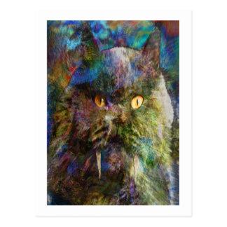 Cave Cat Postcard
