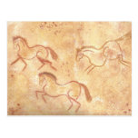 Cave Drawing Painting of Horses Postcard
