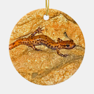 Cave Salamander Ceramic Ornament