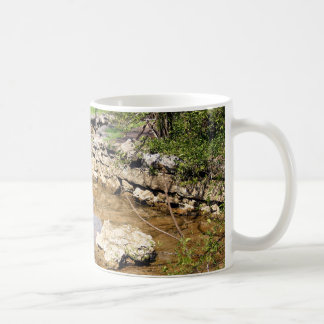 Cave Spring Creek Coffee Mug