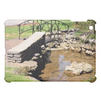Cave Spring Creek iPad Mini Covers