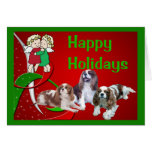 Cavelier King Charles Spaniel Christmas Card Angel