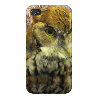 Cavern Owl Watch Cover For iPhone 4
