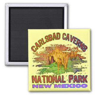 Cavernas parque nacional, New México de Carlsbad Iman De Nevera