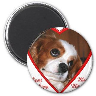 Cavi Love Magnet