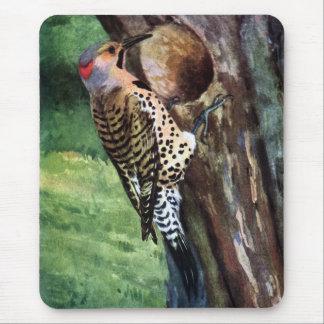 cavidad Amarillo-provista del parpadeo y del árbol Alfombrilla De Ratones