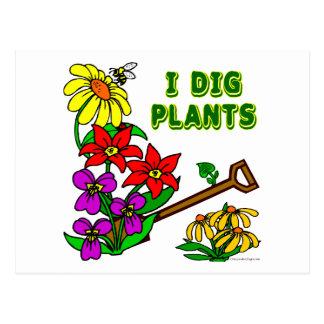 Cavo decir del jardinero de las plantas postal