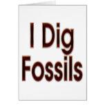 Cavo los fósiles rojos