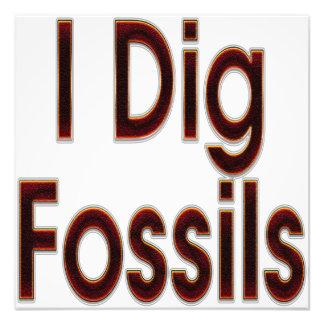 Cavo los fósiles rojos arte con fotos