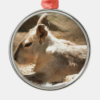 Cavy Round Metal Christmas Ornament