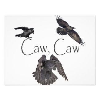 Caw del Caw Comunicados Personalizados