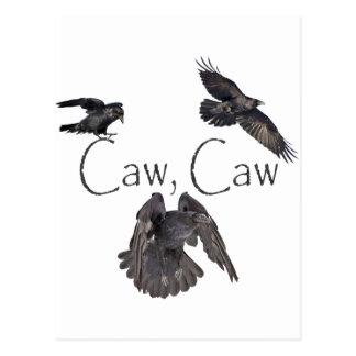 Caw del Caw Tarjeta Postal