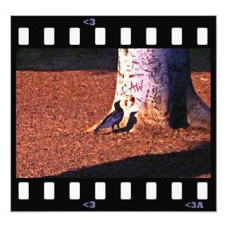 caw del cuervo de los pájaros… arte fotográfico