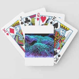 Cay - WOWCOCO Bicycle Playing Cards