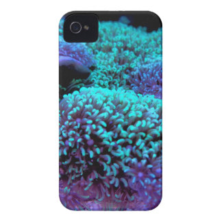 Cay - WOWCOCO iPhone 4 Case