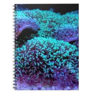 Cay - WOWCOCO Spiral Notebook