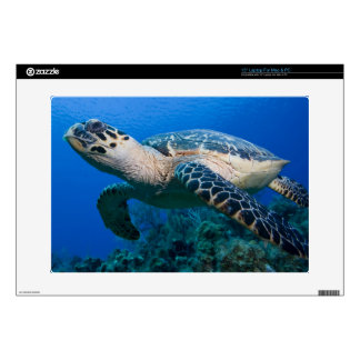 "Cayman Islands, Little Cayman Island, Underwater 2 15"" Laptop Skins"