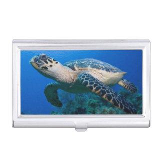Cayman Islands, Little Cayman Island, Underwater 2 Business Card Holder