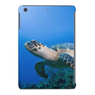 Cayman Islands, Little Cayman Island, Underwater 2 iPad Mini Retina Covers