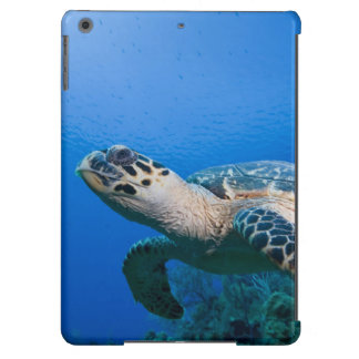 Cayman Islands, Little Cayman Island, Underwater 2 Cover For iPad Air