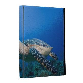 Cayman Islands, Little Cayman Island, Underwater 2 iPad Folio Cases