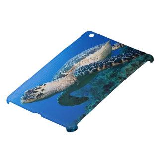 Cayman Islands, Little Cayman Island, Underwater 2 iPad Mini Covers