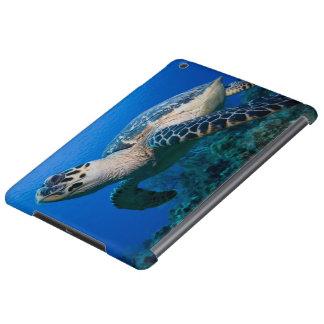 Cayman Islands, Little Cayman Island, Underwater 2 iPad Air Case