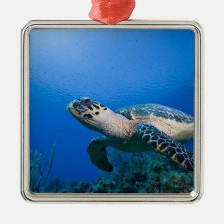 Cayman Islands, Little Cayman Island, Underwater 2 Metal Ornament