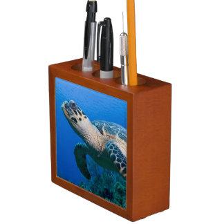 Cayman Islands, Little Cayman Island, Underwater 2 Pencil Holder