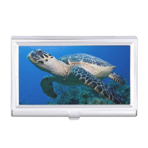 Cayman Islands, Little Cayman Island, Underwater 2 Business Card Holders