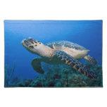 Cayman Islands, Little Cayman Island, Underwater 2 Placemats