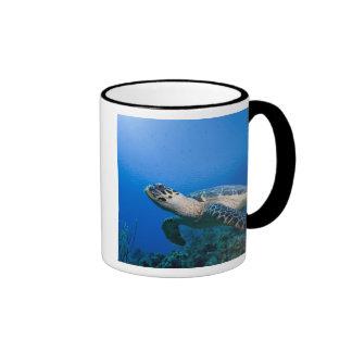 Cayman Islands, Little Cayman Island, Underwater 2 Ringer Mug