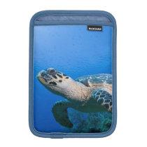 Cayman Islands, Little Cayman Island, Underwater 2 Sleeve For iPad Mini