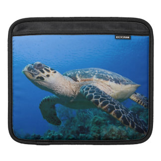 Cayman Islands, Little Cayman Island, Underwater 2 Sleeves For iPads