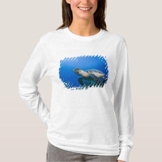 Cayman Islands, Little Cayman Island, Underwater 2 T-Shirt