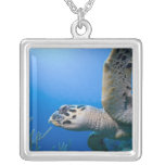 Cayman Islands, Little Cayman Island, Underwater Square Pendant Necklace