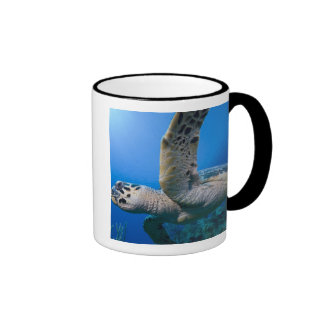 Cayman Islands, Little Cayman Island, Underwater Ringer Mug