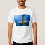 Cayman Islands, Little Cayman Island, Underwater T-shirt