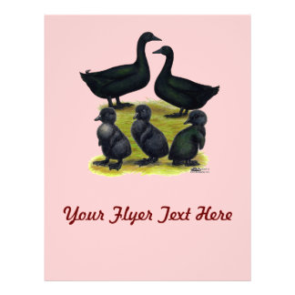 Cayuga Duck Family Flyer