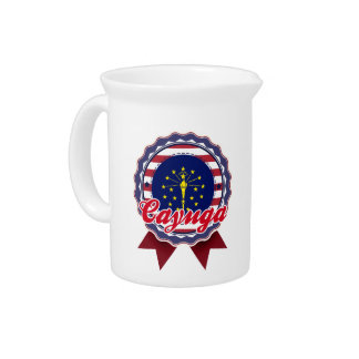 Cayuga, IN Beverage Pitchers