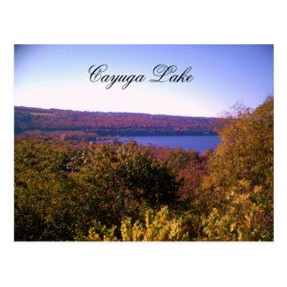 CAYUGA LAKE IN AUTUMN  postcard