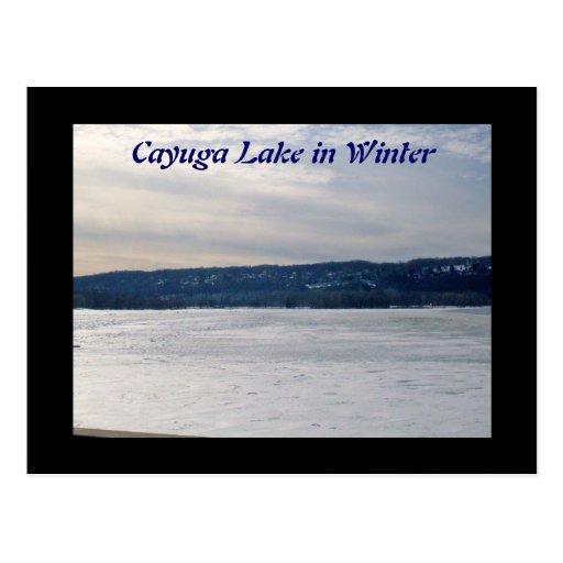 CAYUGA LAKE IN WINTER post card