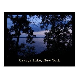 Cayuga Lake NY Sunset Postcard
