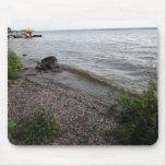 Cayuga Lake Rocky Beach Mousepad