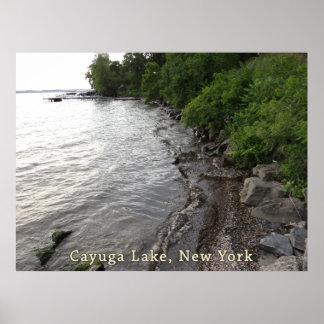 Cayuga Lake Rocky Beach Poster