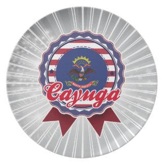 Cayuga, ND Plate