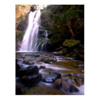 Cayuse Creek Postcard