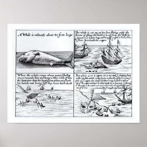 Caza de ballenas en Spitzbergen en 1611 (grabado)  Posters