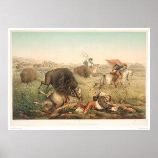 Caza del bisonte (0008A) Póster